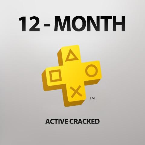 پلاس اکتیو کرکی 12 ماهه